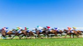 Horse Racing Speed Motion Blur Grass Track
