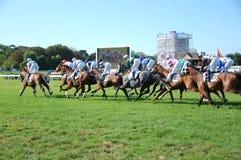 Horse races Stock Photo
