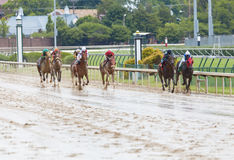 Horse races at Churchill Downs Stock Image