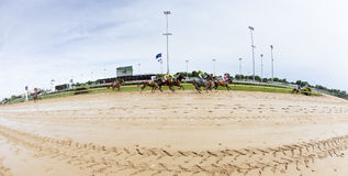 Horse races at Churchill Downs Royalty Free Stock Images