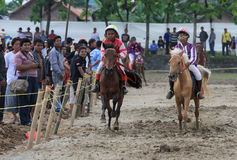 Horse races Royalty Free Stock Photos