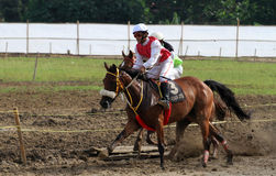 Horse races Stock Images
