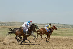 Horse races Stock Image