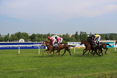 Horse races. In Velka Chuchle, Prague, Czech Republic royalty free stock photography
