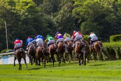Horse racetrack Stock Image