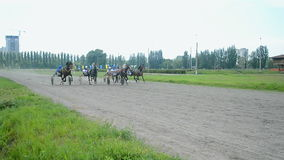 Horse racetrack during Kyiv city Day celebration in Kiev, Ukraine, stock video footage