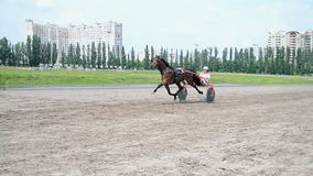 Horse racetrack during Kyiv city Day celebration in Kiev, Ukraine, stock video footage