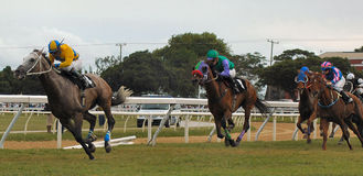 Horse racing. In Barbados, West Indies Stock Photo