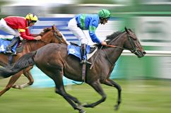 Horse Racing. Two horse riders racing towards the finishing line Stock Photo