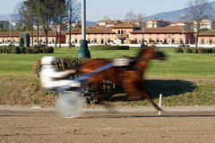 Horse Racing. An image of horse trotting cart race competition Royalty Free Stock Images