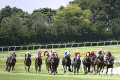 Horse Racing. At a turf club Stock Image
