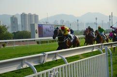 Horse Racing. Sha Tin Racecourse Horse Racing Royalty Free Stock Photography