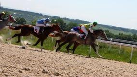 Horse racing. Stock Image