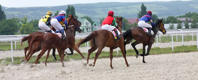 Horse racing. PYATIGORSK, RUSSIA - JULY 10: Unidentified riders at the start of a race for the prize of Ogranichitelni on July 10, 2011, in Pyatigorsk, Caucasus Stock Photography