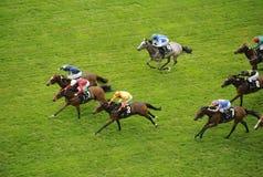 Horse Racing. At Royal Ascot,England stock images