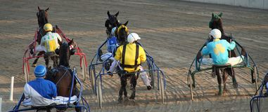 Horse racing. Some beautiful photos of a grand prix in Italy royalty free stock images