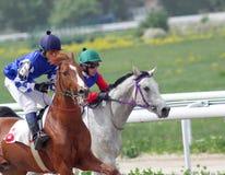 Horse racing. Stock Photography