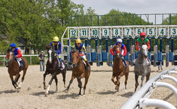 Horse racing. Stock Photography