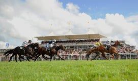 Horse Racing. Tony Hamilton and Jamesbo's Girl win the 5:05 at Goodwood, 4-8-12 Royalty Free Stock Images