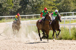 Horse racing. Royalty Free Stock Photos