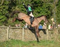 Horse Racing Stock Image