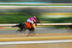 Horse racing. Jockey on a horse racing on race track Royalty Free Stock Image