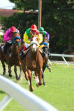 Horse racing. At Bush Hill, The Garrison, Barbados, West Indies Stock Image
