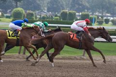 Horse Racing_6514-1S. Race Horses and Jockeys Sprint for Finish Line Royalty Free Stock Photography