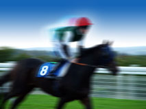 Free Horse Racing Royalty Free Stock Photos - 7179588