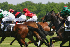 Horse racing. Game Royalty Free Stock Images