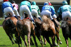 Horse-racing Royalty Free Stock Image