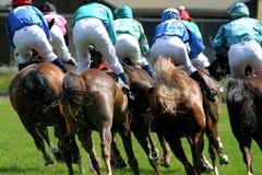 Horse-racing. Horses and jockeys at race-course Royalty Free Stock Image