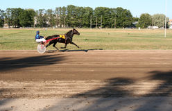 HORSE RACING. In Estonia Royalty Free Stock Image