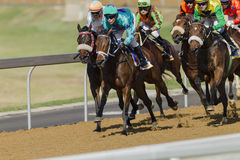 Horse Racing Action Stock Images