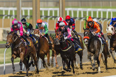 Horse Racing Action Royalty Free Stock Images