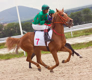 Horse Racing Stock Image