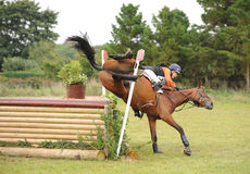 Horse Racing. Amy hawley takes a tumble from zoppah karla at gatcombe 22-9-13 Stock Photography
