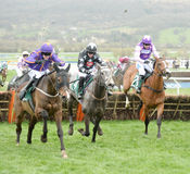 Horse Racing. Artic fire moave-orenge near side 1st seen here on the run in at Cheltenham races 17-3-17 Stock Images