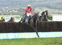 Horse Racing. Ballyhill 1st red-black-white seen here jumping the last at cheltenham races 1-1-18 Stock Photo