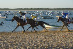 Horse racing on the beaches of Sanlucar Royalty Free Stock Images