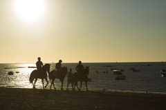 Horse racing on the beaches of Sanlucar Royalty Free Stock Image