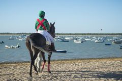 Horse racing on the beaches of Sanlucar Royalty Free Stock Photo