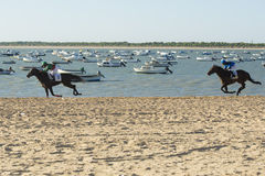 Horse racing on the beaches of Sanlucar Royalty Free Stock Photography