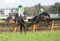 Horse Racing. Buveur d`air 1st right of frame and rayvin black 2ndleft of frame seen here jumping the last at sandown races 4-2-17 Stock Photos