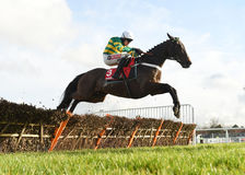 Horse Racing. Buveur d`air 1st seen here jumping the last on the 1st circuit at sandown races 4-2-17 Stock Photos