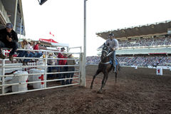 Horse racing at Calgary Stampede Stock Photos