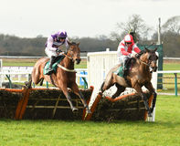 Horse Racing. Celestial magic 1st left of frame and wildmoor boy 2nd seen here jumping the  last at warwick races 14-1-17 Royalty Free Stock Photography