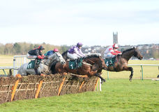 Horse Racing. Celestial magic 1st Pink/moave and wildmoor bor 2nd far side red/white seen here jumping out in the country at warwick races 14-1-17 Royalty Free Stock Photography