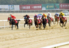 Horse racing  in China. The Eighth China-Wuhan open horse racing was held on Jan.8,2011 in Orient Horse Town  in Wuhan of China.Many sportsmen with their horse Stock Photography