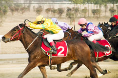Horse racing in China Royalty Free Stock Image